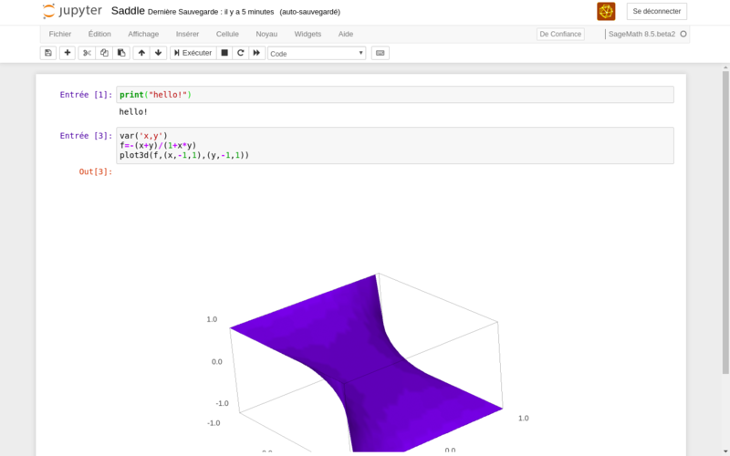 A screenshot of a mathematical equation and output in Jupyter Notebooks, an open source application for sharing code and visualizations.