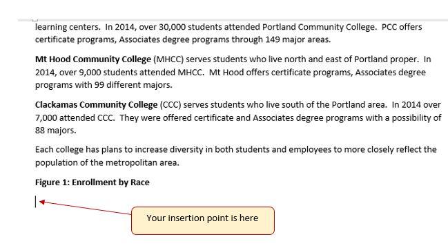 """Insertion point is below """"Figure 1: Enrollment by Race"""""""