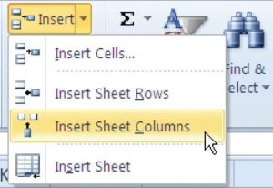 Insert button drop-down menu for inserting cells, rows, columns or sheets.