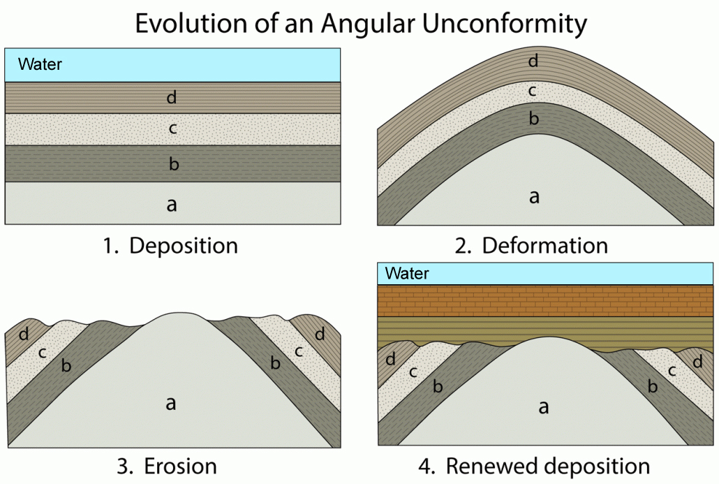 The four steps in this figure shows the processes by which an angular unconformity forms.