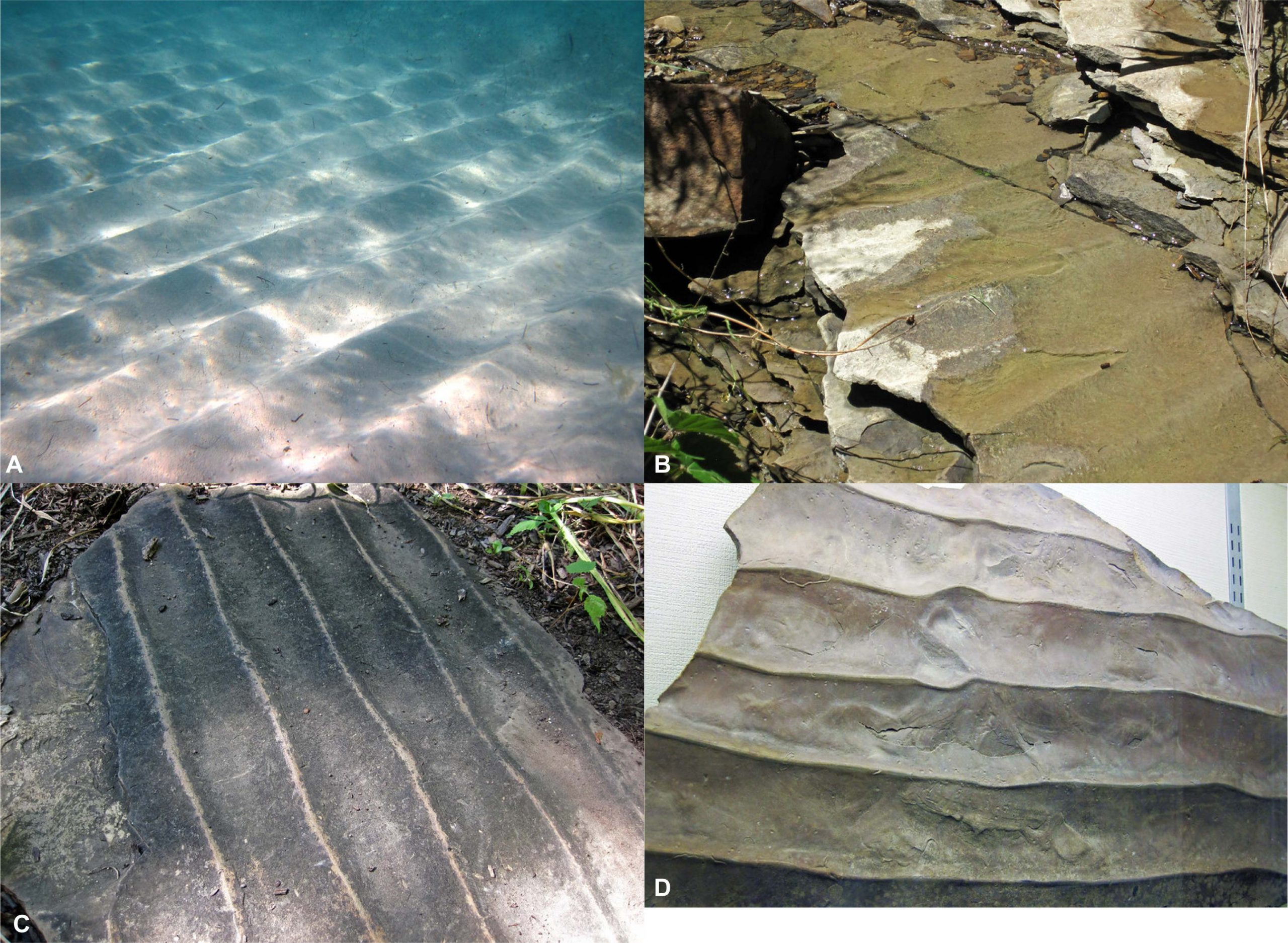 Four images of symmetrical ripple marks. The limbs of the ripples dip at similar angles.