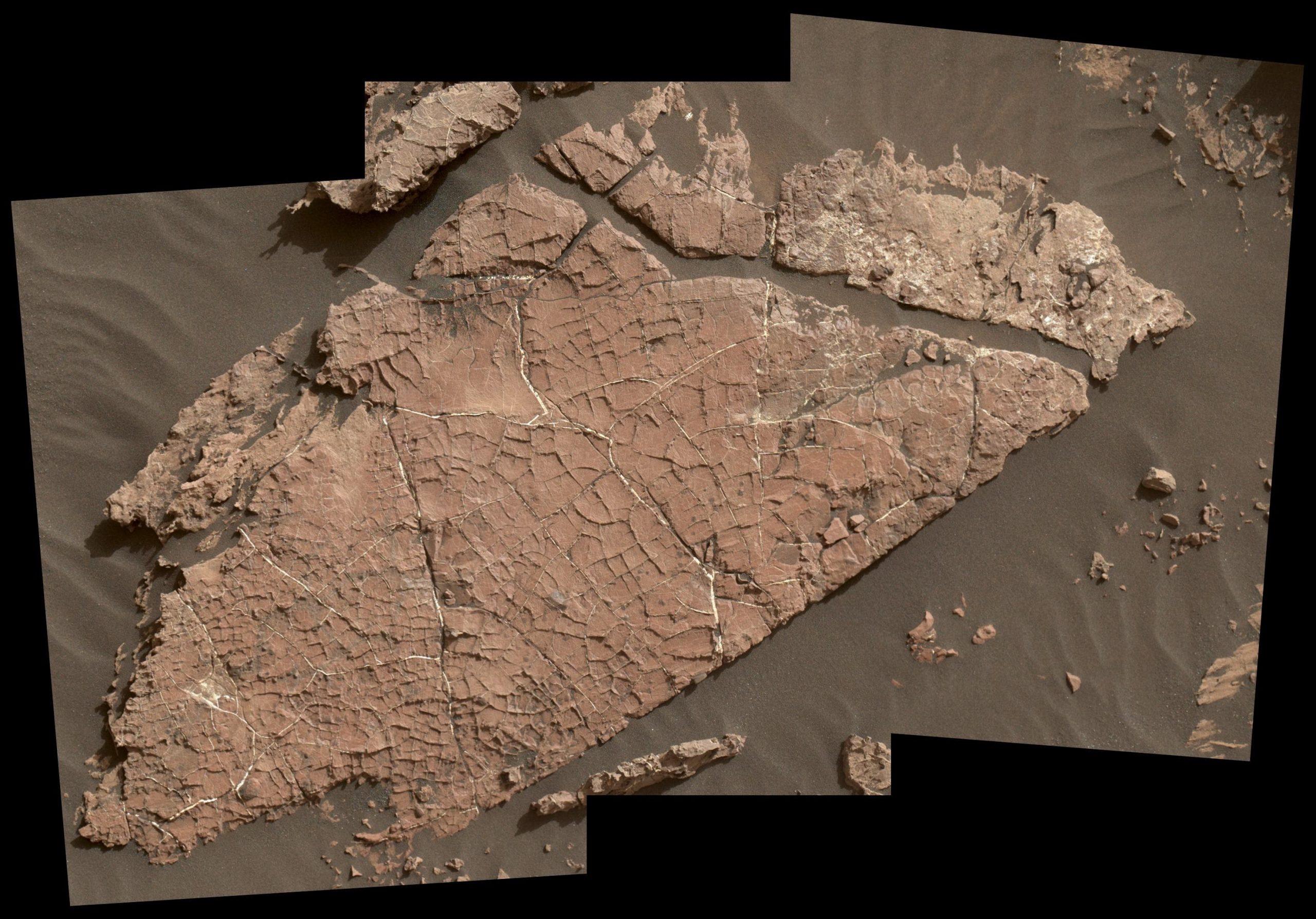 Composite photos of mudcracks seen in Gale Crater, Mars.