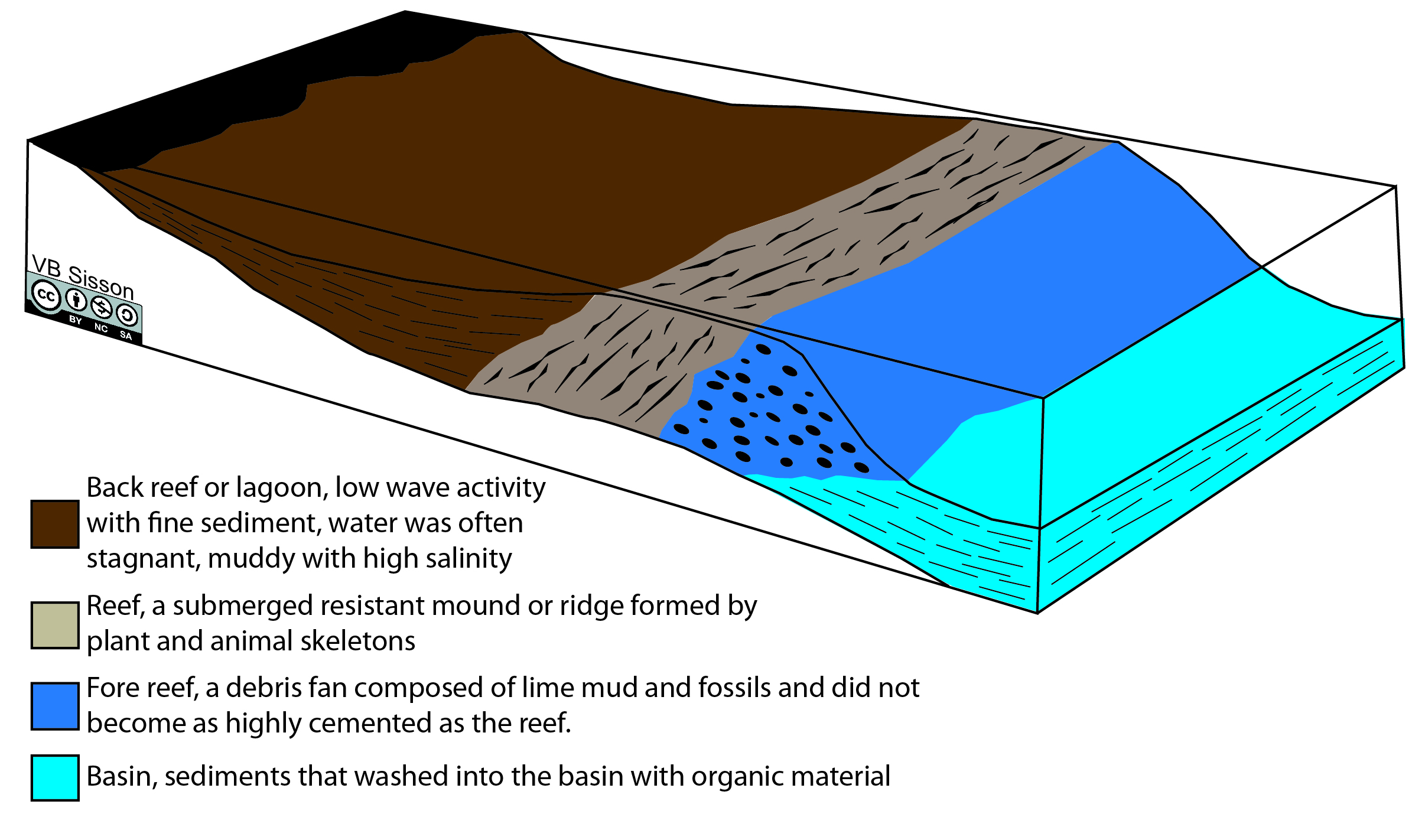 Structure of Devonian reef