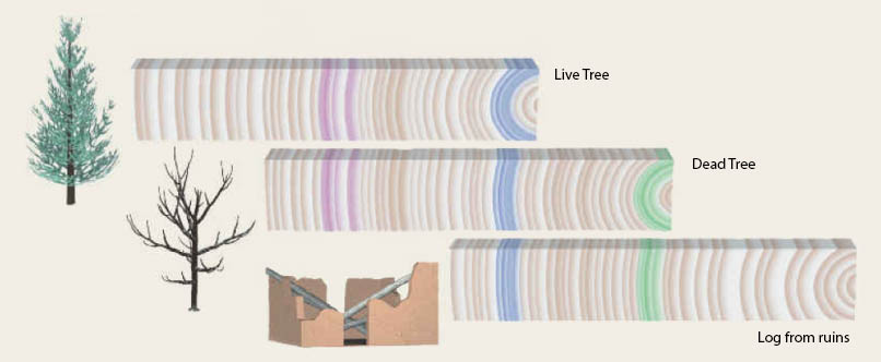 Correlation of 3 tree ring records with partial overlap to make one long record