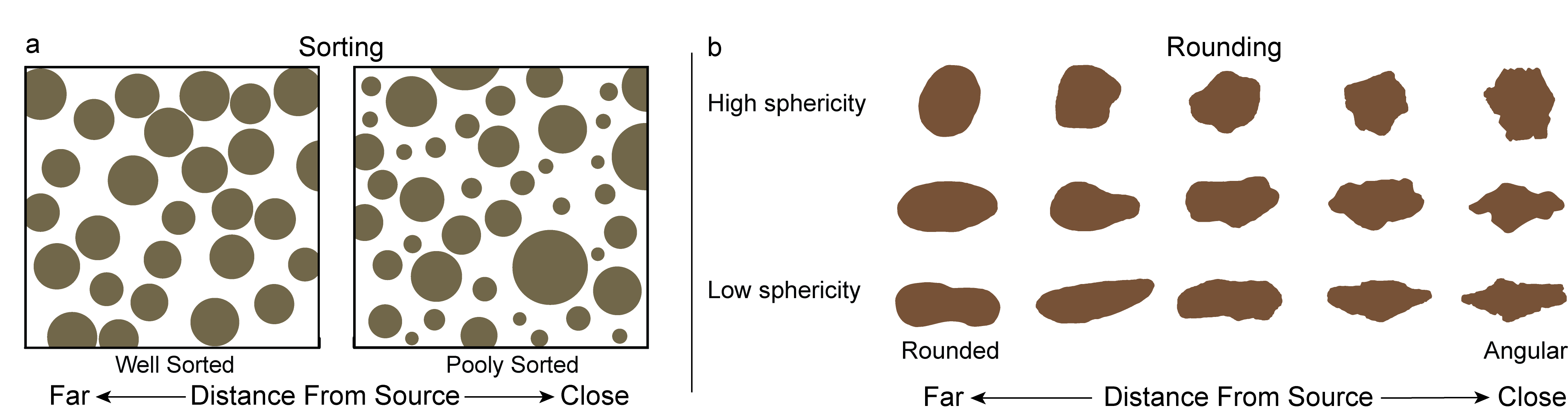 Characterizing the sorting and roundness of sediment grains.